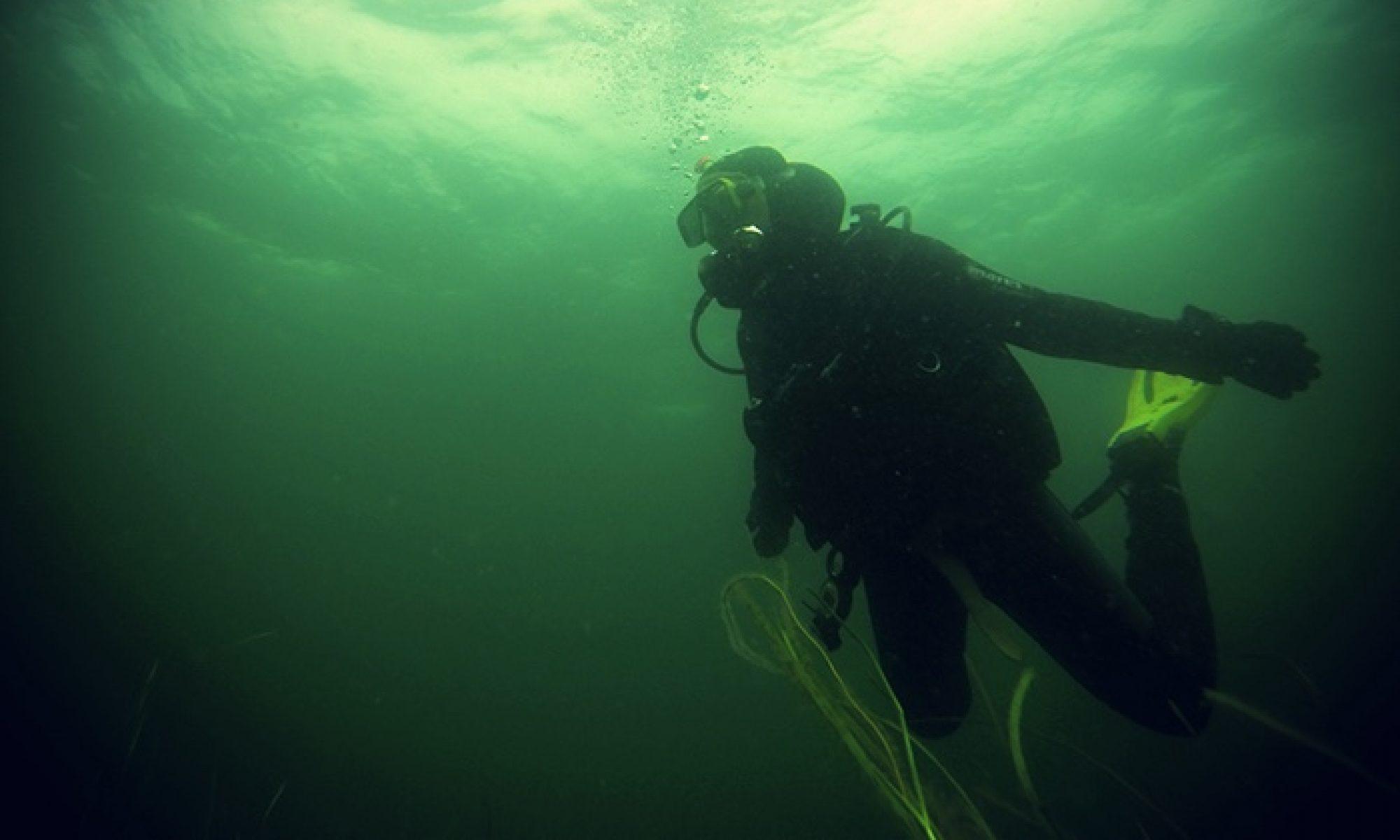 Panum Underwater Club